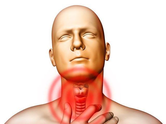 Травы при боли в горле для лечения (горлянка, алоэ и др.)