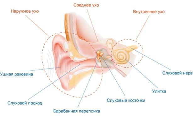 Холестеатома уха – симптомы и лечение (операция)