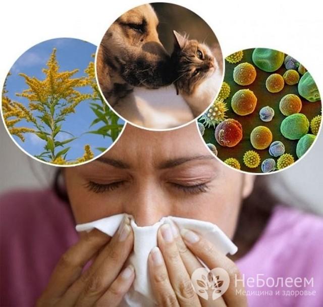 Как вылечить гайморит без антибиотиков у взрослого - можно ли это сделать