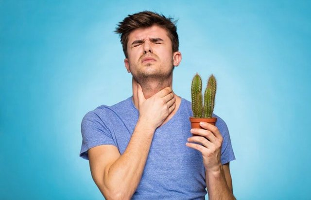 Причины боли в горле при глотании слюны – почему появляется боль