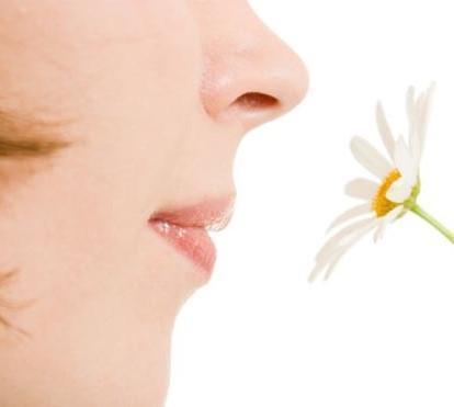 Пропало обоняние при насморке - почему не чувствуется запах и вкус