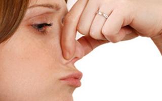 Насморк и чихание без температуры у взрослого - причины и лечение соплей