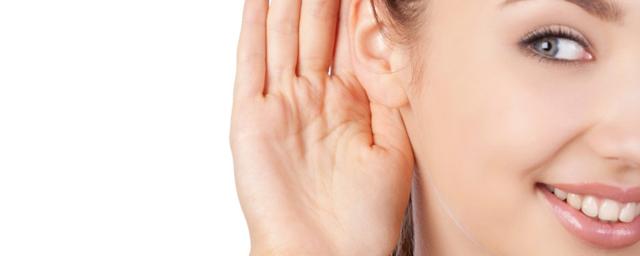 Анатомия и строение уха человека – как оно устроено
