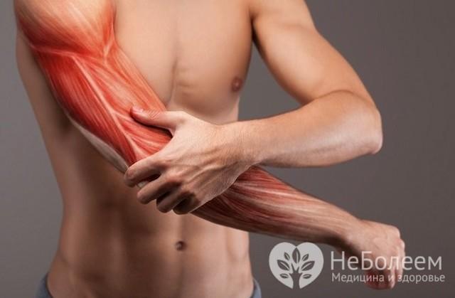 Вирусная ангина - симптомы инфекционного острого тонзиллита у взрослых
