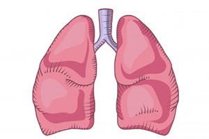 Какие самые эффективные и действенные средства и препараты от кашля