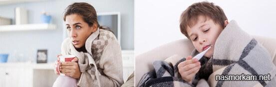 Откуда берутся сопли у человека при насморке и как они образуются