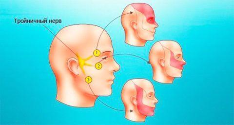 Болит горло и ухо с одной стороны – что делать и чем лечить