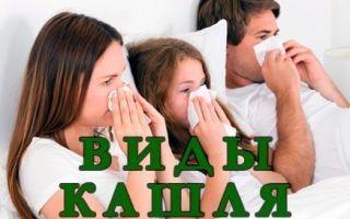 Все виды кашля и способы их лечения