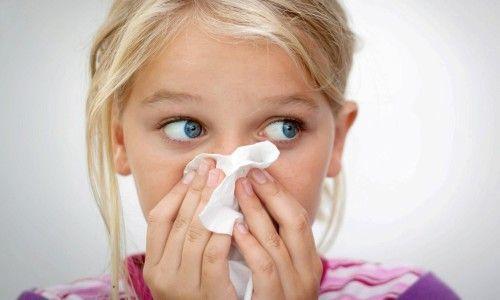 Профилактика гайморита в домашних условиях - как избежать и предотвратить болезнь