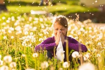 Виды насморка и ринита у взрослых - какие разновидности существуют