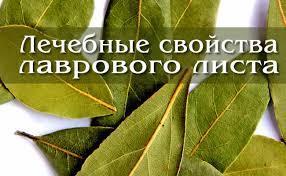 Лавровый лист от гайморита - рецепт народного средства
