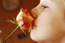 Спрей от насморка и заложенности носа – список для взрослых